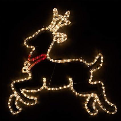 Wintergreen Lighting LED Christmas Decorations Outdoor, Christmas LED  Decorations Outdoor, LED Rope Light ( - Amazon.com : Wintergreen Lighting LED Christmas Decorations Outdoor