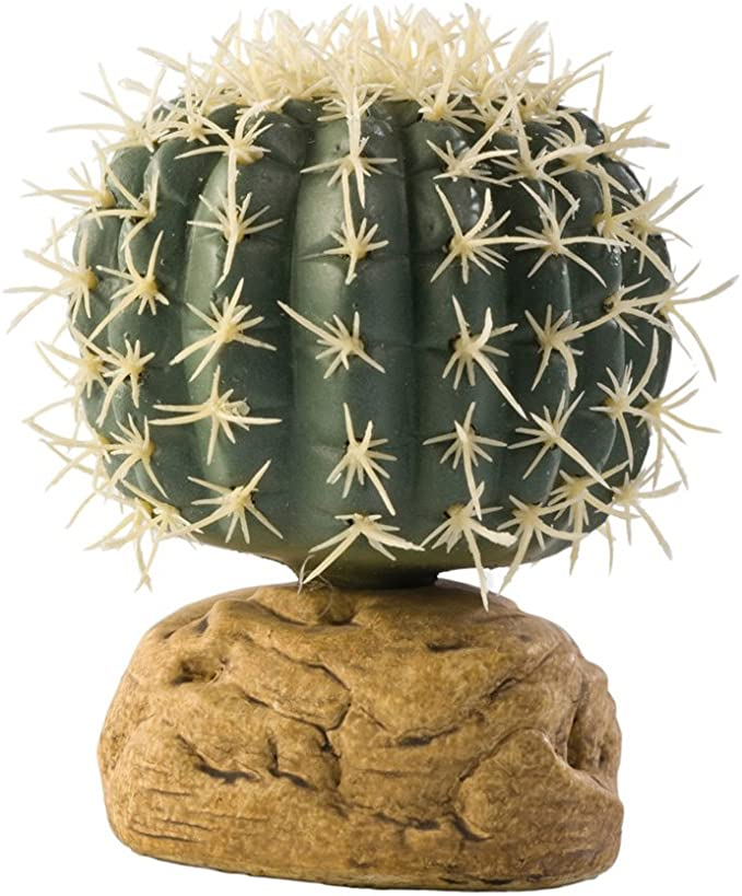 Exo Terra PT 2980 - Cactus, tamaño pequeño