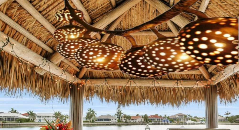 Amazon.com: Azul orquídea colgar Strand luz porche Tiki ...
