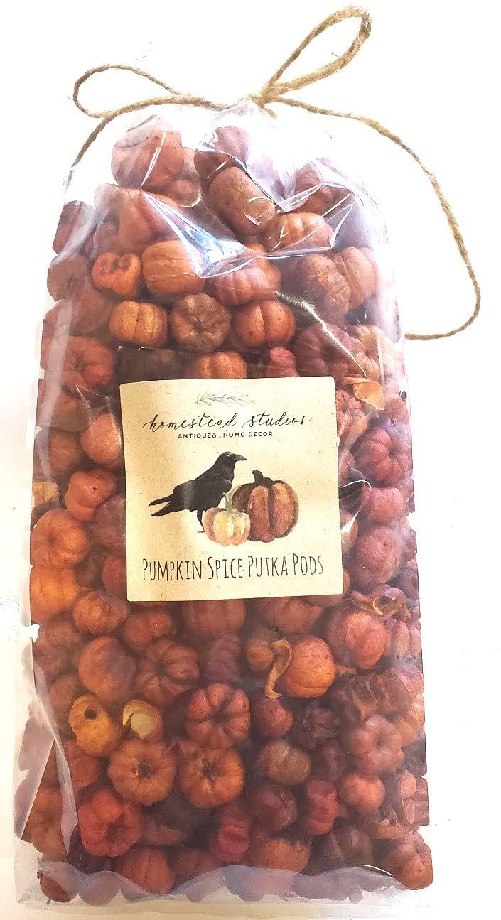 Homestead Studios - Large Bag Pumpkin Spice Putka Pods or Mini Pumpkins - Perfect Bowl Filler, Craft Project, Weddings, Showers, Fall or Autumn Decorating by Homestead Studios