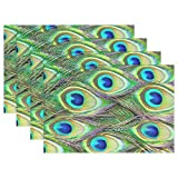 Vipsk Peacock Feathers Green Feathers non slip heat insulation Plate Tray mat Place mats Set of 4 Washable Table Mat for Kitchen Dining Table 12 X 18 Inches lace Place Mats