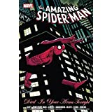 Spider-Man: Died In Your Arms Tonight