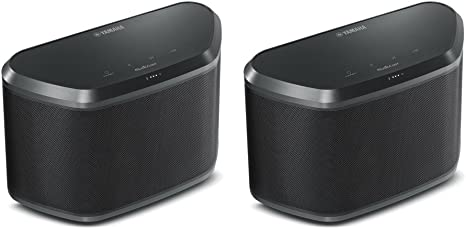 airplay or bluetooth wireless speaker