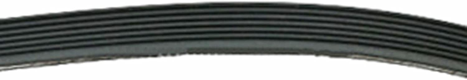 Spares2go Poly-V 7PH Drive Belt for Whirlpool Tumble Dryer 2010H7