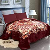 JML Fleece Blanket King(85'x93', 10lbs), Korean Style Heavy Blanket - Plush Soft Warm 2 Ply Printed Raschel Bed Blanket