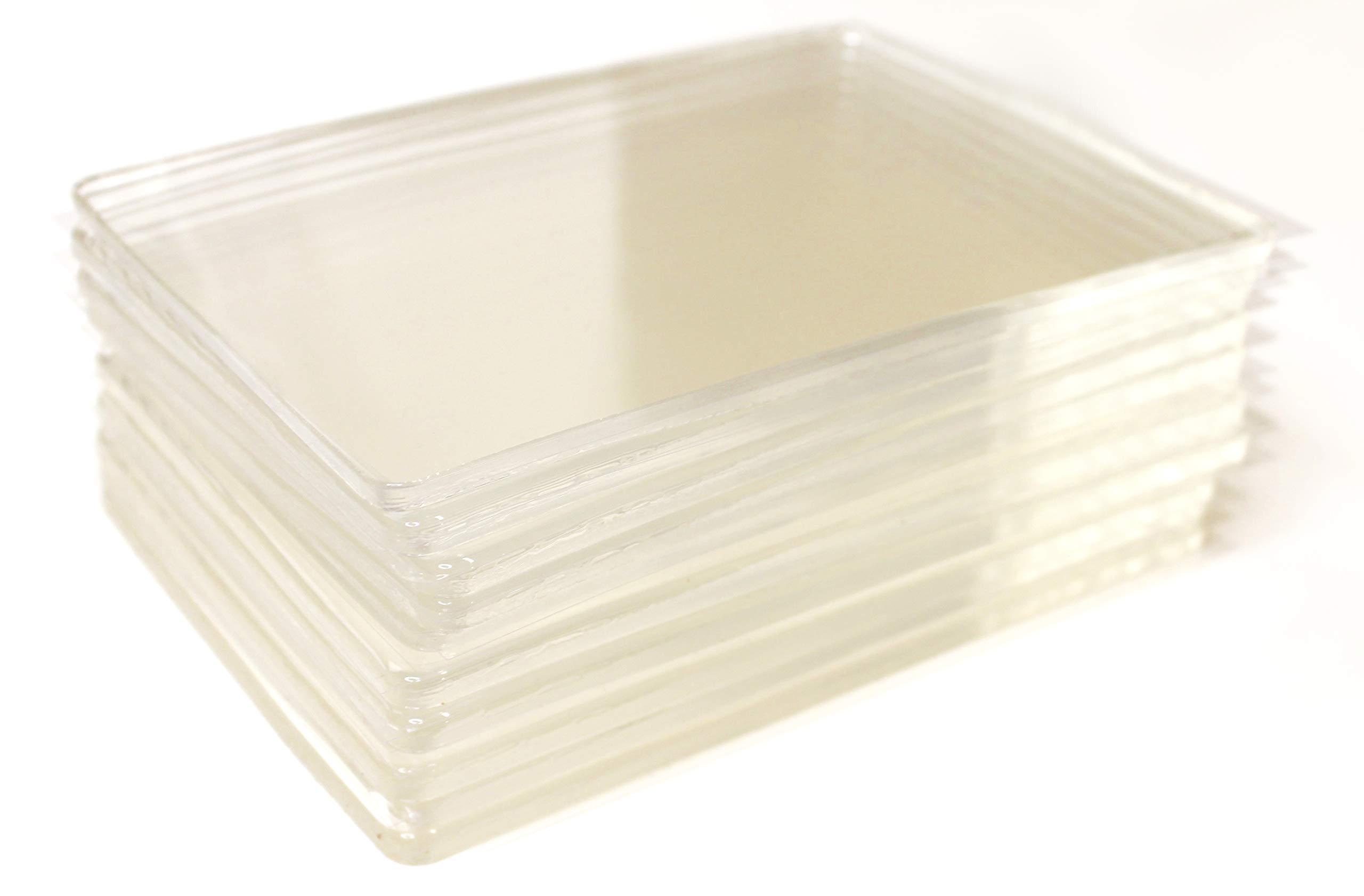 Gelli Arts Gel Printing Plate 5x7'' Class Pack by Gelli Arts