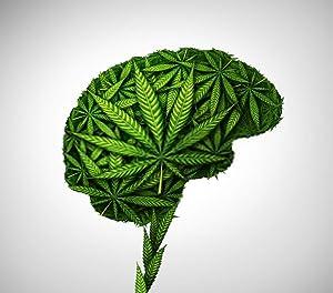 "DIY 5D Diamond Painting Kit Marijuana Leaves Cannabis Brain Ganja Head Addict Consumer Patient 16"" X 20"" Adult Children Full Drill Rhinestone Cross Stitch Art Crafts for Home Decoration"