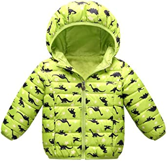 TAIYCYXGAN Baby Little Boys Winter Dinosaur Puffer Down Jacket Coat Boys Warm Hoodies Outwear Zipper Up