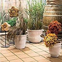 MJ-Flowerpot Maceta Maceta de jardín de yuca Romana Retro Jardín Interior Terracota (18L) 32X20X28cm: Amazon.es: Hogar