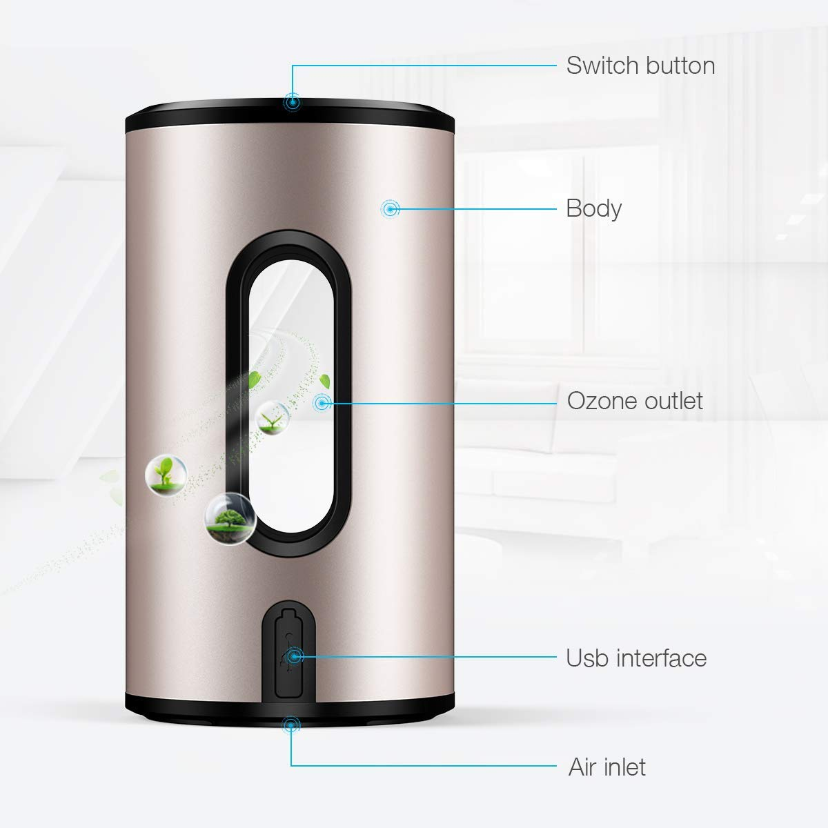 isYoung Air Purifier with True Hepa Filter, Odor Allergies Eliminator, Air Cleaner for Smokers, Smoke, Dust, Mold, Home and Pets (Black)