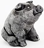 Sitting Pig Concrete Statue Cement Piggy Figurine Farm Pig Country animal Figure Review