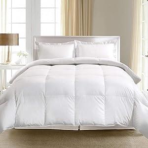 Blue Ridge Home Fashions 1000 Thread Count Egyptian Cotton European Goose Down Comforter, White, Full/Queen