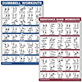 QuickFit Dumbbell Workouts and Resistance Bands Exercise Poster Set - Laminated 2 Chart Set - Dumbbell Exercise Routine & Resistance Tubes Workouts (18' x 27')