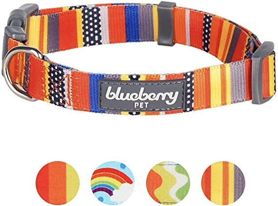 Dog Collar By BlueBerry
