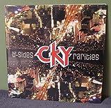 B-Sides & Rarities 2x LP (Red/Purple Vinyl) /1000