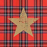 Paperproducts Design Beverage/Cocktail Napkins (Pack of 20), Tartan Christmas Star, Multicolor