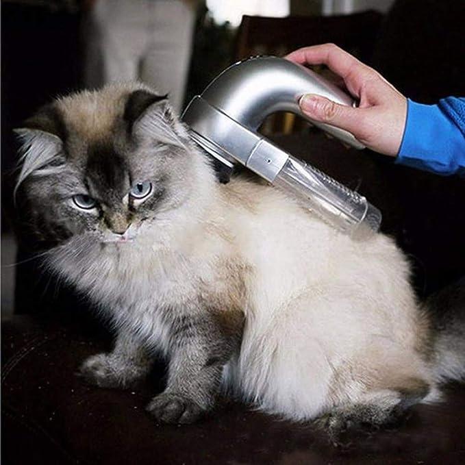 Gowind6 Aspirador de Pelo eléctrico para Perro o Gato: Amazon.es: Productos para mascotas