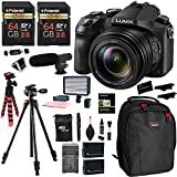 Panasonic LUMIX DMC-FZ2500 Digital Camera 4K Video, 2 Polaroid 64GB Memory Card, Ritz Gear Video 160 LED Light, Vanguard Tripod, 2 Batteries, Charger, Cleaning Kit, Backpack and Accessory Bundle