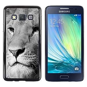 TECHCASE**Cubierta de la caja de protección la piel dura para el ** Samsung Galaxy A3 SM-A300 ** Lion White Black Muzzle Majestic Animal