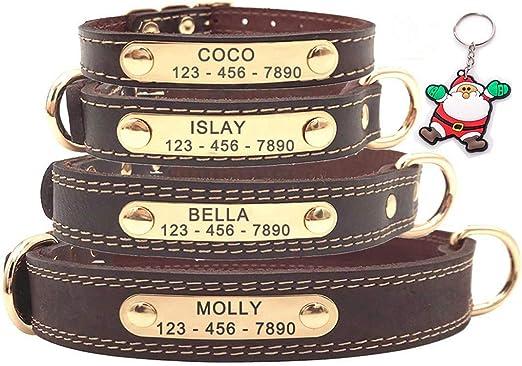 SLZZ Collar para Perro de Cuero Personalizable, Placa de identificación para Grabar, Tacto Suave de Piel auténtica, Ajustable, Perros pequeños, medianos y Grandes: Amazon.es: Productos para mascotas