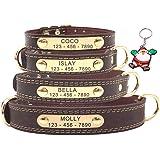 SLZZ Collar para Perro de Cuero Personalizable, Placa de identificación para Grabar, Tacto Suave de Piel auténtica…