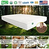 Palmpring Coconut Mattress Organic Coconut Coir Cambay Mattress, Queen