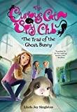 The Trail of the Ghost Bunny (The Curious Cat Spy Club)