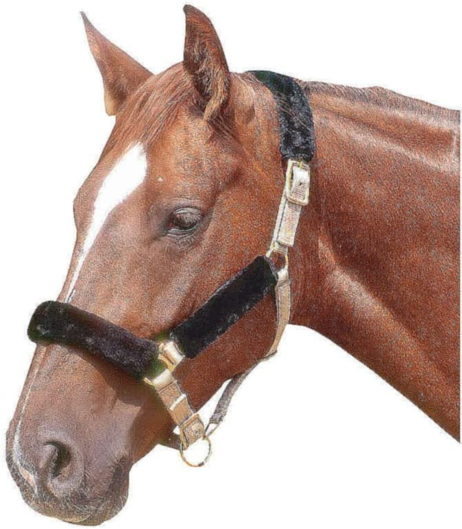 AMKA–Cabestro 4piezas |nasenflausch Enganche Trasero | Protector de muserola (nariz Schoner para caballos