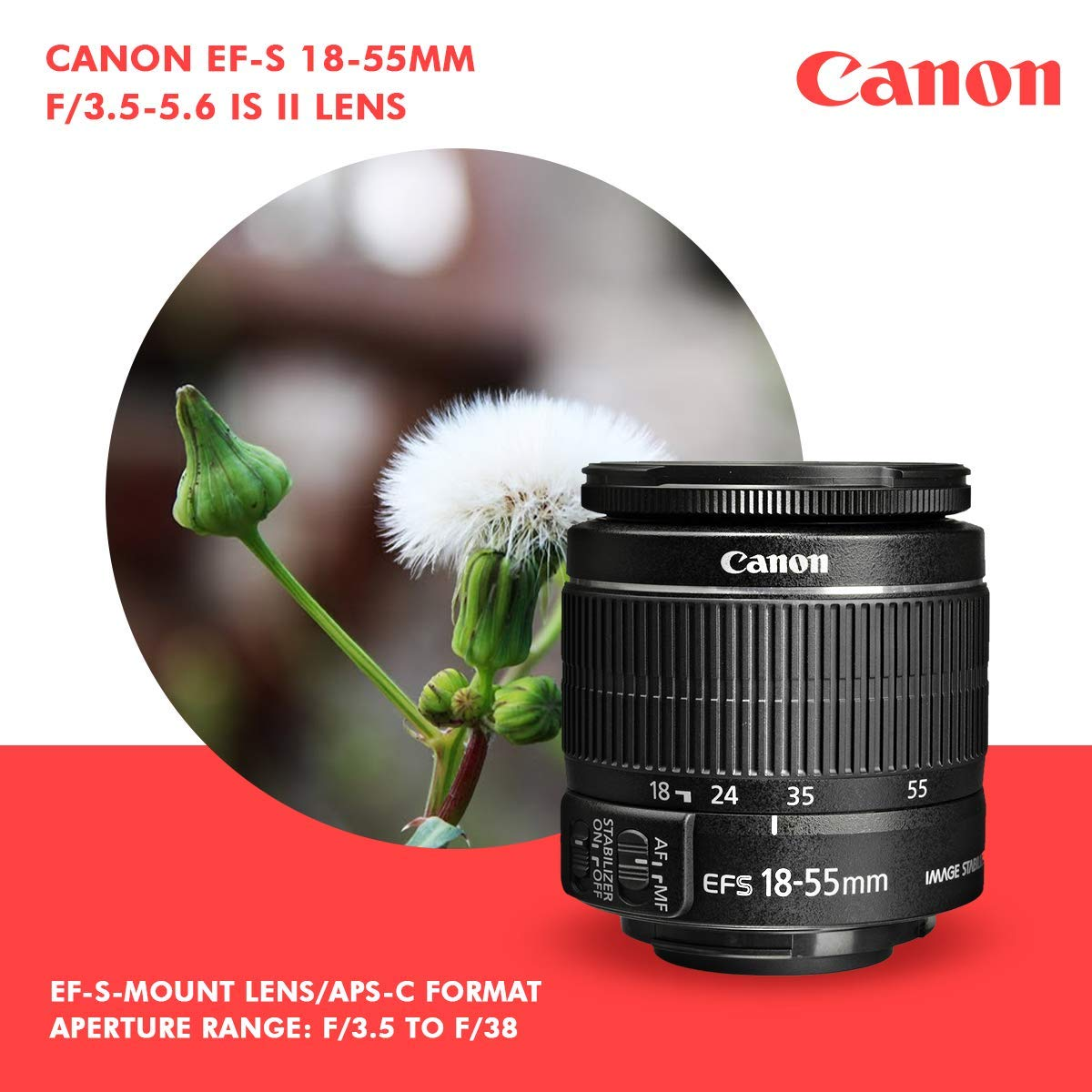 Canon T7 EOS Rebel DSLR Camera with EF-S 18-55mm f/3.5-5.6 is II Lens W/Telephoto & Wideangle Lens 3 Pc. Filter Kit + Tripod + Flash & 2 X 32GB SD Card and Basic Accessory Kit by Canon (Image #3)