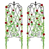 "Amagabeli Garden Trellis for Climbing Plants 47"" x 16"" Rustproof Black Iron Potted Vines Vegetables Flowers Patio Metal Wire Lattices Grid Panels for Ivy Roses Cucumbers Clematis Pots Supports 2 Pack"