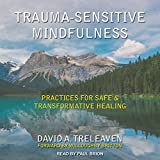 #3: Trauma-Sensitive Mindfulness: Practices for Safe and Transformative Healing
