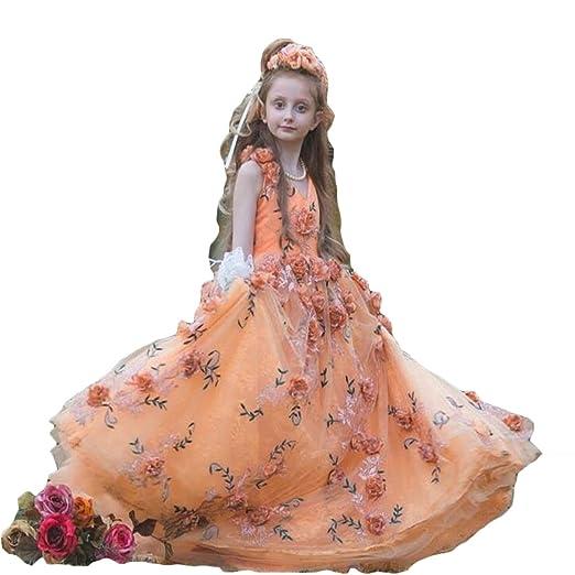 968cd8b4f5 Amazon.com  Newdeve Girls Princess Gown 3D Flower Baby Toddler Flower Girls  Dress (7