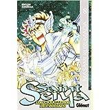 saint seiya 8: Los caballeros del zodiaco