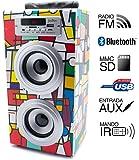 Reproductor JoyBox Bluetooth Picasso Biwond