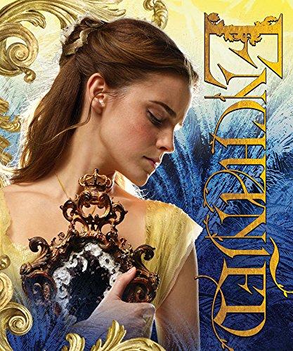 Disney Beauty & The Beast,Enchanted HD Silk Touch Throw Blanket, 50