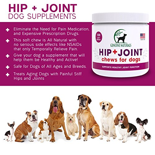 Genuine Naturals™ Glucosamine Chondroitin, MSM, Organic Turmeric Soft Chews by, Hip and Joint Supplement for Dogs, Supports Healthy Joint Function and Helps With Pain Relief, 120-Count by Genuine NaturalsTM (Image #3)