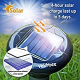 Vekibee Pack of 4 Solar Mole Repeller Sonic Mole Repellent Gopher Repellent Ultrasonic Vole Control Rodent Repellent Pest Control Ultrasonic Unlike Mole Killer Poison Mole Traps That Work Cruel
