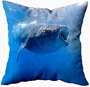 Musesh Decorative Throw Pillow Case, Baby Pillows Covers Whale Sharks Swimming Blue Waters Mexico Mujeres 20X20 Inches Indoor Outdoor Pillowcases for Sofa Home Bed