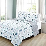 3pc Blue White Seashells Themed Quilt Full Queen Set, Coastal Bedding Beach Ocean Sea Shells Starfish Corals Pink Hawaii Tropical Sealife, Stripes Cotton Polyester