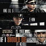 If I Should Die (feat. Nichole) - Single