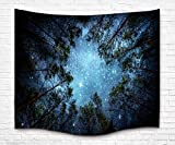"QIYI Interior decoration Light-weight Polyester Fabric tapestry - Romantic Pictures Art Nature Home Decorations for Living Room Bedroom Dorm - 60""L x 80""W (153cmx203cm) - The Night In The Forest"