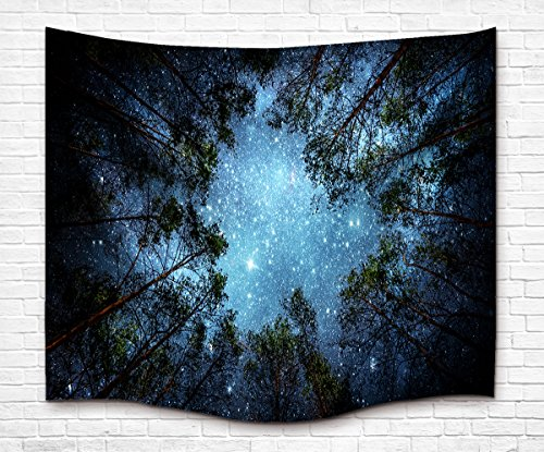 Celestial Galaxy Night Sky Full of Stars Wall Tapestry, Sublime Forest Nature View Mysterious Blue Hanging Artistic Home Décor 80L X 60W (Artistic Tapestry)