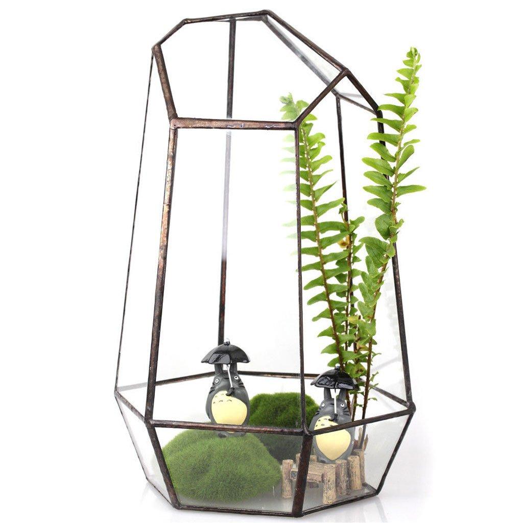 Maison Serre Vase en Verre Hexagonal pour Miniature Jardin de F/ée Micro Paysage