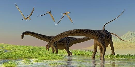 Amazon Com Poster De Un Rebano De Pajaros De Pterosaur Que Vuelan Sobre Dos Dinosaurios De Diplodocus Que Se Alimentan En Un Exuberante Pantano 20 X 10 Home Kitchen Se extinguieron, en parte gracias a la caída de un meteorito que destruyó su ecosistema. amazon com