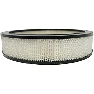 Luber-finer AF212 Heavy Duty Air Filter: Automotive