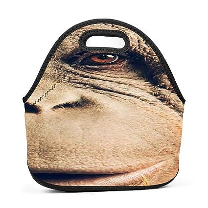 81a4550e2264 Amazon.com - dreambest The Chimpanzee's Face Insulated Neoprene ...