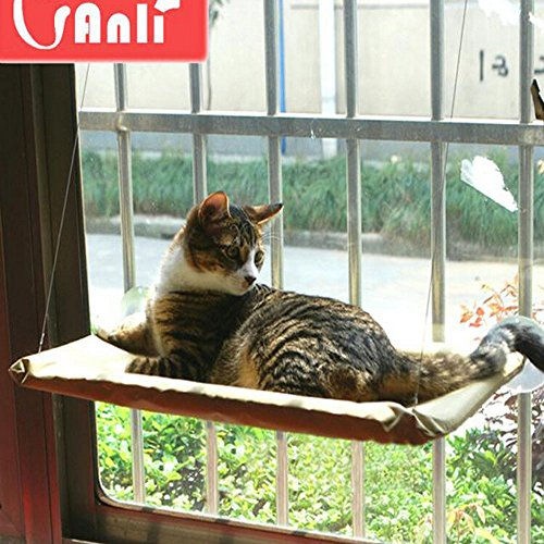 sunny seat cat bed instructions