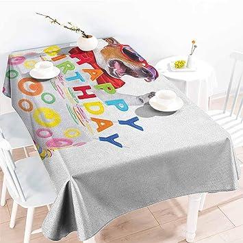 Amazon.com: Familytaste - Mantel de mesa para cumpleaños ...