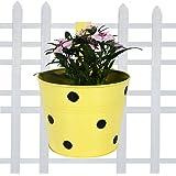 TrustBasket Single Pot Railing Planter - Yellow with Dots