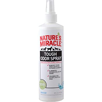 Amazon.com : Nature's Miracle 3-in-1 Odor Destroyer ...